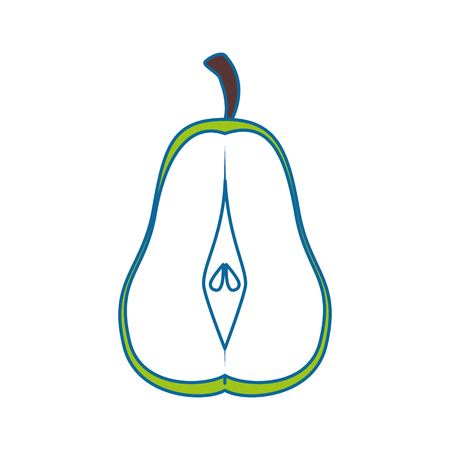 pear cut in a half vector illustration graphic design