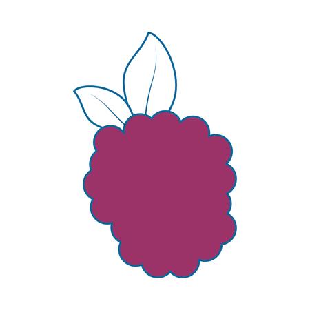 검은 딸기 신선한 과일 아이콘 벡터 일러스트 그래픽 디자인 일러스트