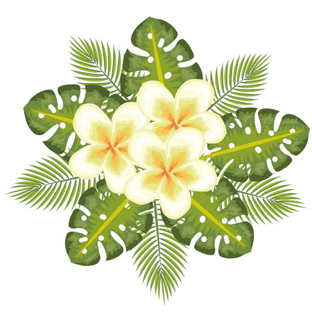 Yellow tropical flowers with leaves over white background vector illustration Illustration