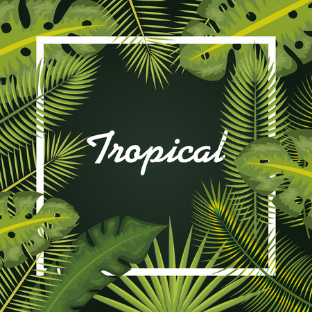 Tropical sign with white frame and tropical leaves vector illustration