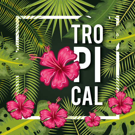 Fuchsia tropical flowers and leaves with sign over green background vector illustration