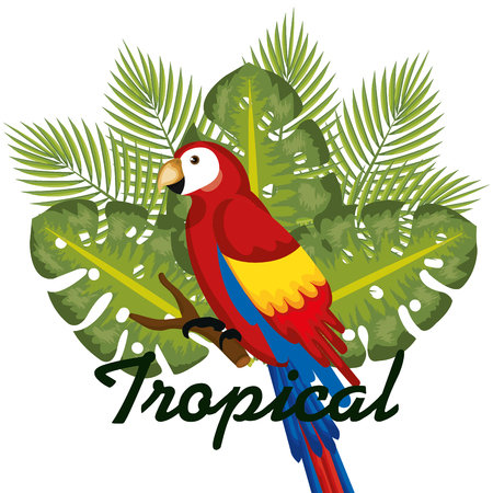 Guacamaya and tropical leaves over white background vector illustration