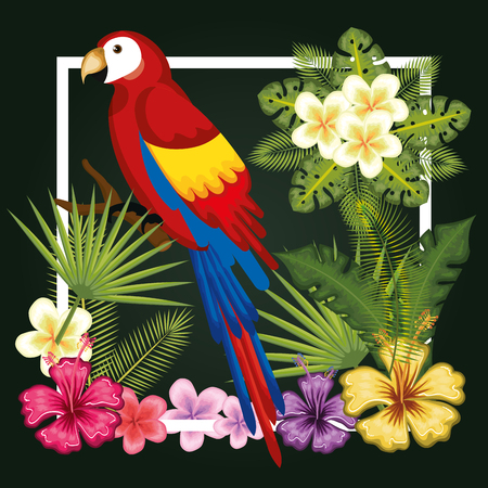 Guacamaya with tropical leaves and flowers over dark green background vector illustration Illustration