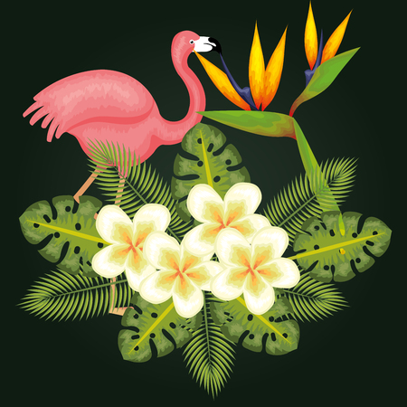 Tropical flowers and leaves with pink flamingo over dark green background vector illustration Illustration