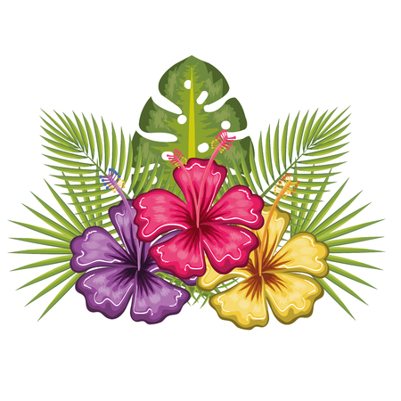 Colorful tropical flowers and leaves over white background vector illustration Фото со стока - 80734013