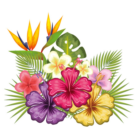 Colorful tropical flowers and leaves over white background vector illustration