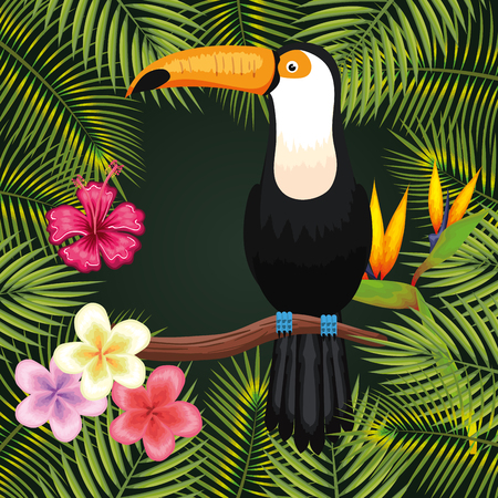 Toucan with tropical flowers and leaves frame over green background vector illustration