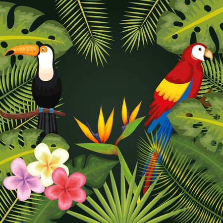 Tropical flowers and leaves with toucan and guacamaya frame over green background vector illustration
