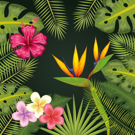 Tropical flowers and leaves frame over green background vector illustration