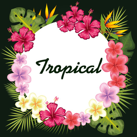 Colorful tropical flowers and leaves surrounding round tropical sign vector illustration Çizim