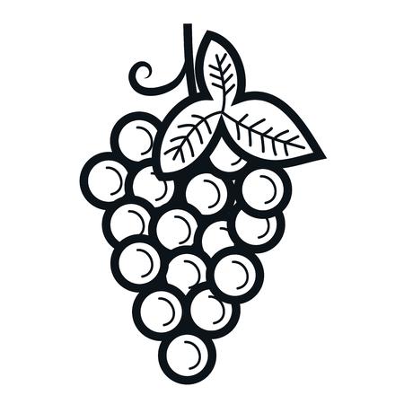 ブドウ新鮮果物のアイコン ベクトル イラスト デザイン