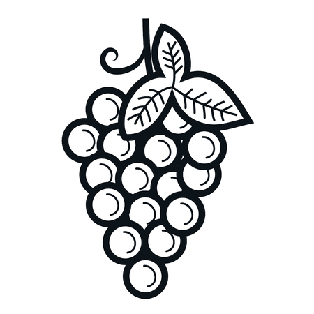 grapes fresh fruit icon vector illustration design Ilustracja