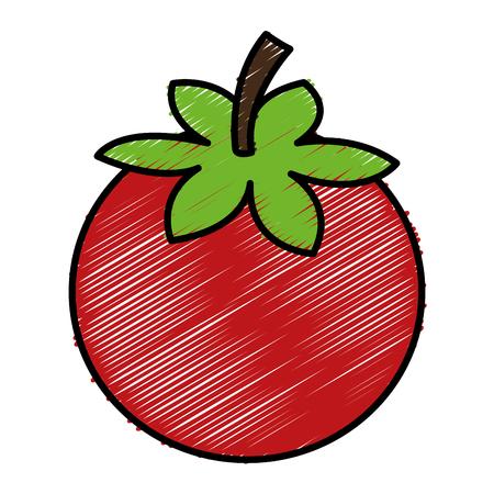 tomato fresh vegetable icon vector illustration design