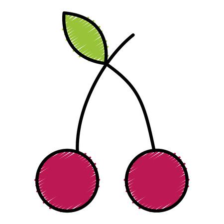 cherry fresh fruit icon vector illustration design