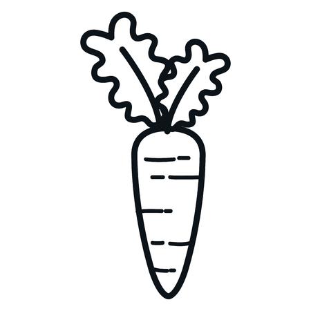 Wortel Vers Groentesymbool Vector Illustratie Ontwerp Stock Illustratie