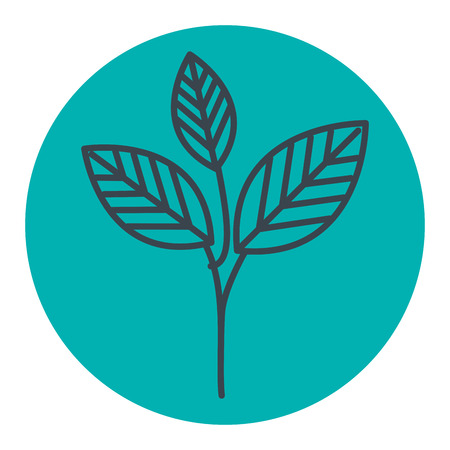 cultivate: leafs plant ecology icon vector illustration design