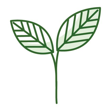 COlogie végétale leafs conception icône illustration vectorielle Banque d'images - 80759540