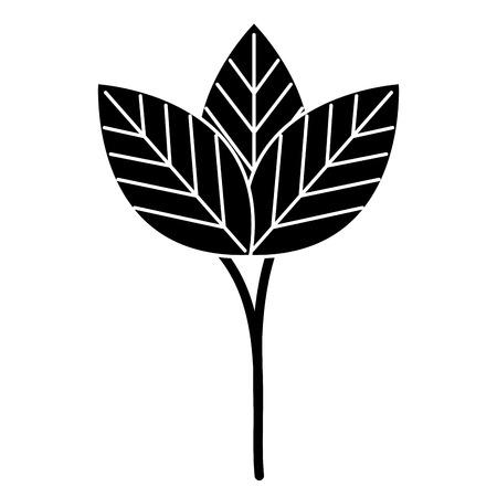 COlogie végétale leafs conception icône illustration vectorielle Banque d'images - 80759561