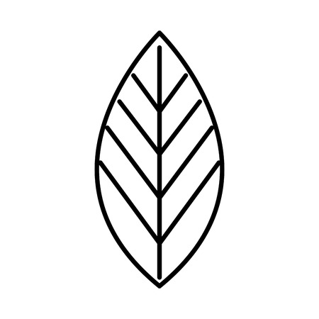 COlogie végétale leafs conception icône illustration vectorielle Banque d'images - 80759608