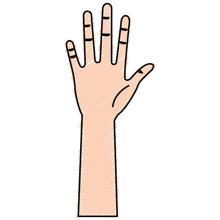 Illustrazione vettoriale di icone aperte di mano umana Archivio Fotografico - 80828232