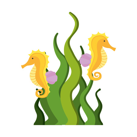 cute seahorse isolated icon vector illustration design Illustration