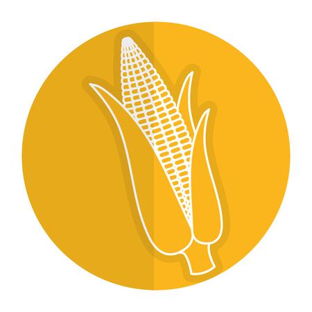 sweetcorn: corn cob isolated icon vector illustration design Illustration