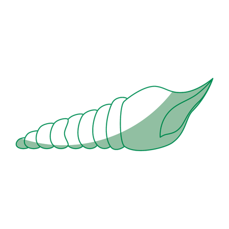 Mollusk icon over white background vector illustration