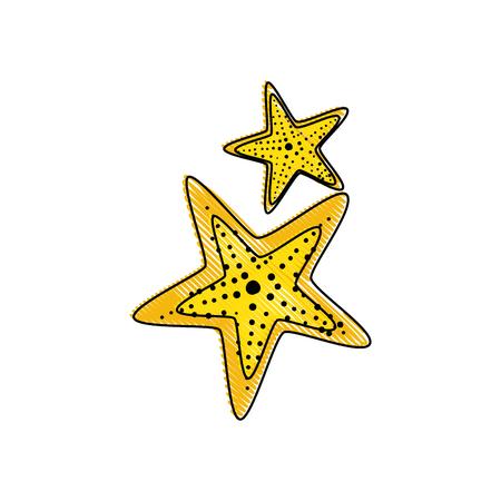 흰색 배경 위에 바다 스타 아이콘 화려한 디자인 벡터 일러스트 레이 션