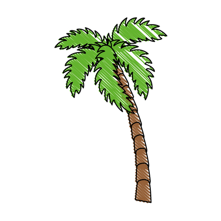 tropical palm icon over white background colorful design vector illustration