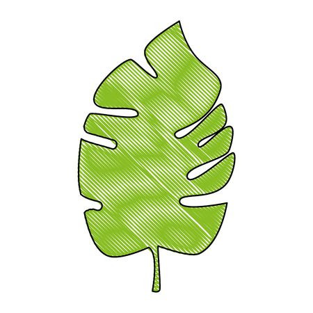 tropical leaf icon over white background colorful design vector illustration