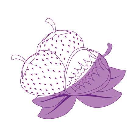 strawberry fruit icon over white background vector illustration