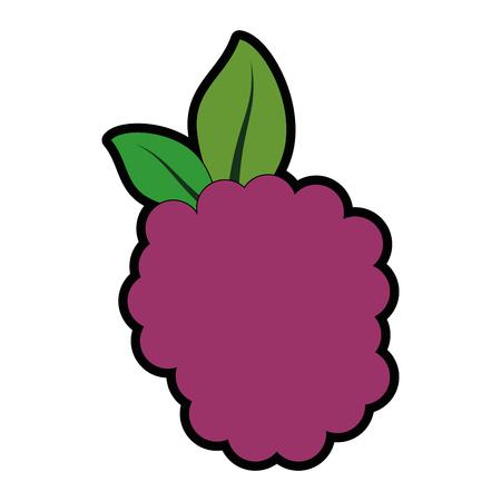 Blackberry fruit pictogram over witte achtergrond kleurrijke ontwerp vectorillustratie