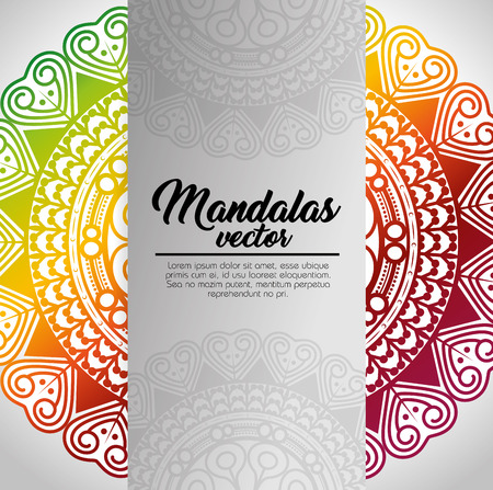mandala vintage template  vector illustration graphic design Illustration