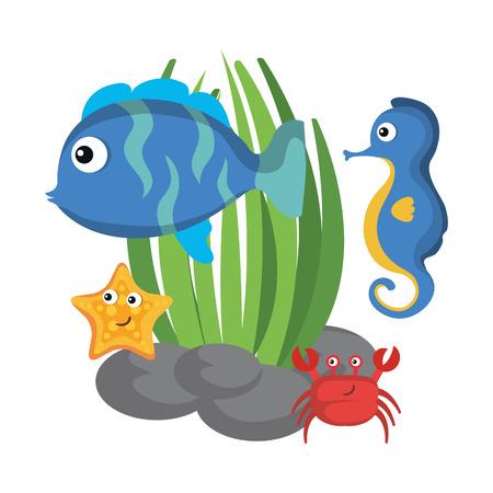 Sea life design with animals and algae vector illustration