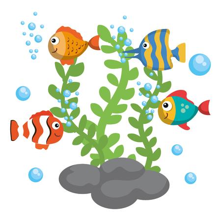 Colorful fish and algae over white background vector illustration Ilustração