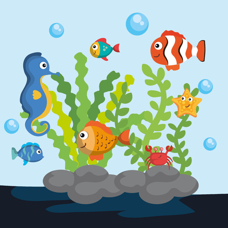 Sea life design with colorful sea creatures vector illustration