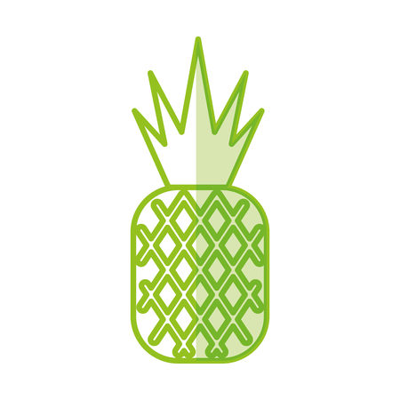 pineapple tropical and exotic fruit vector illustration design Illustration