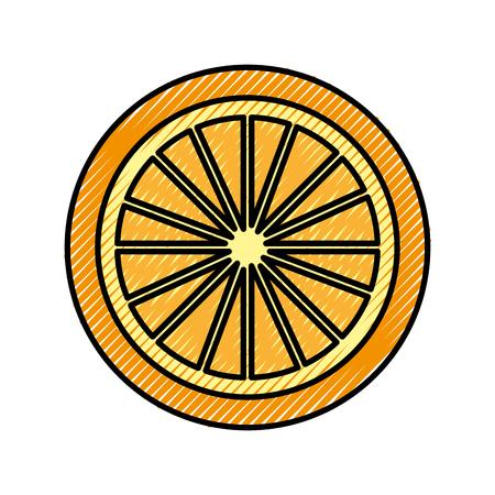 orange tropical and exotic fruit vector illustration design Illustration