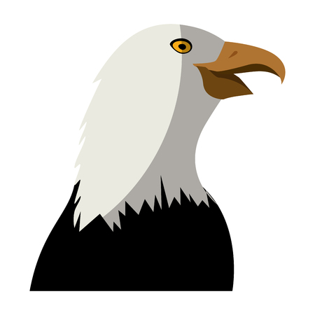 eagle icon over white background colorful design vector illustration