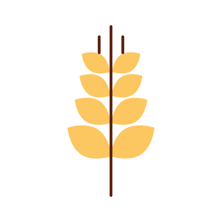spica: spike wheat isolated icon vector illustration design