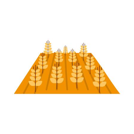 Blé cultures isolé icône du design illustration vectorielle Banque d'images - 81083239