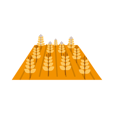 Wheat crop isolated icon vector illustration design