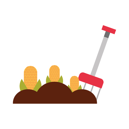 raking: farm rake with corn cultivate icon vector illustration design Illustration