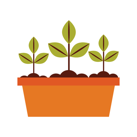 Cultivated plant in pot vector illustration design Banco de Imagens - 81086119