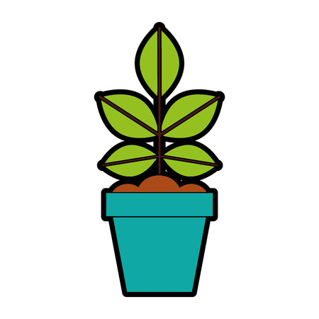 Cultivated plant in pot vector illustration design Stok Fotoğraf - 81084969