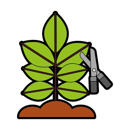 Gekweekte plant met een schaar vector illustratie ontwerp Stock Illustratie