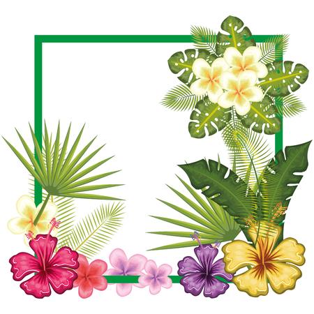 tropical flower decorative frame vector illustration design