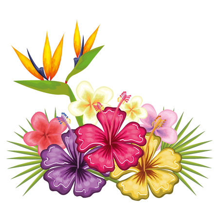 tropical flower decorative icon vector illustration design Illustration