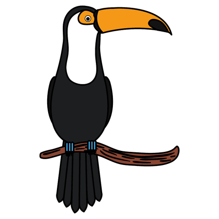 Toucan in branch tropical bird icon vector illustration design