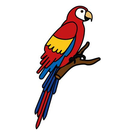 Exotic parrot in branch tropical bird vector illustration design